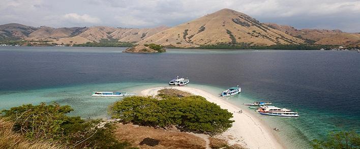 île de Komodo en Indonésie